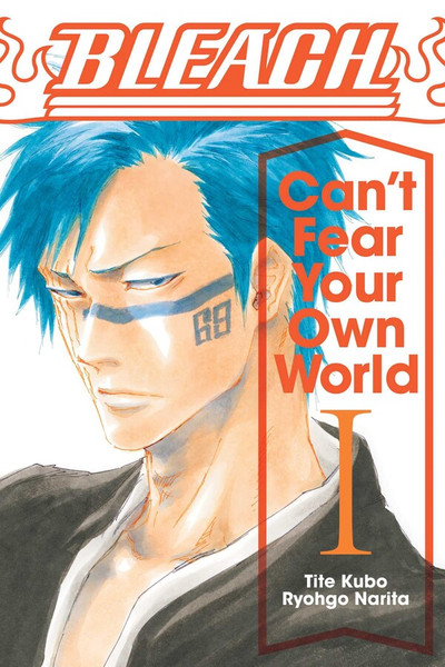 Bleach Can't Fear Your Own World Novel 1