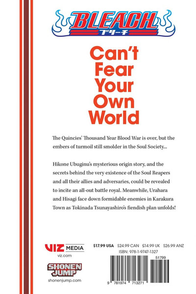 Bleach Can't Fear Your Own World Novel Volume 2