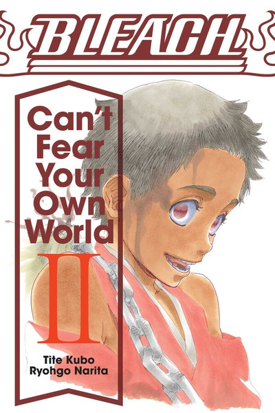 Bleach Can't Fear Your Own World Novel Volume 2