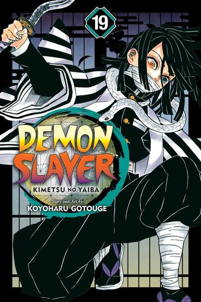 Demon Slayer Kimetsu no Yaiba Manga Volume 19