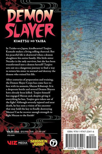 Demon Slayer Kimetsu no Yaiba Manga Volume 22