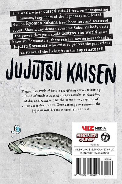 Jujutsu Kaisen Manga Volume 13