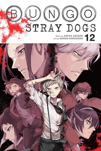 Bungo Stray Dogs Manga Volume 12
