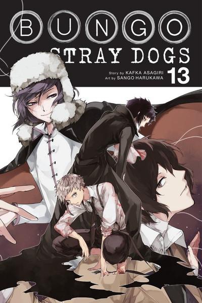 Bungo Stray Dogs Manga Volume 13