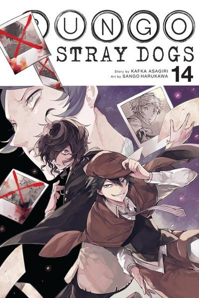 Bungo Stray Dogs Manga Volume 14