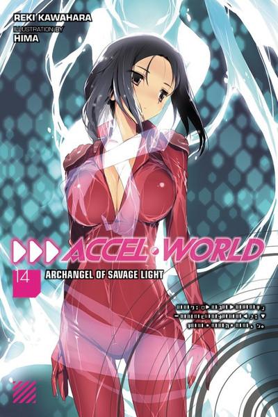 Accel World Novel Volume 14